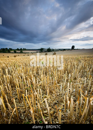 Hay bails and stubble in a field at sunset, Warwickshire, England, UK - Stock Photo
