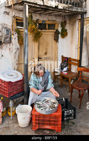 Gutting fish outside a fishermans house in the village of Psarades on the shores of Prespa Lake, Macedonia, Northern - Stock Photo