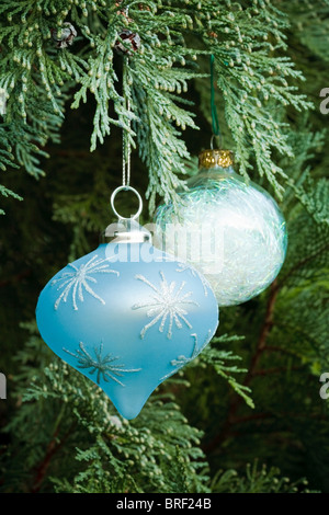 Christmas decorations adorn a real christmas tree - Stock Photo