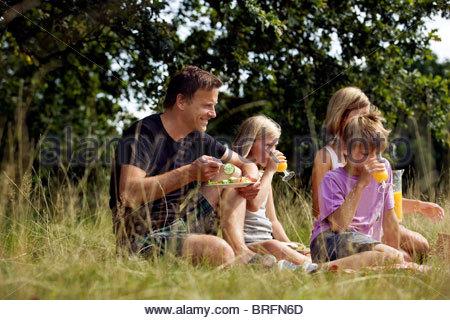 A family having a picnic - Stock Photo