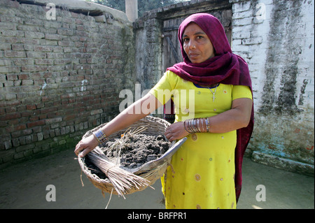 Dalit woman from the cast of the untouchables working as scavangers, cleaning human excrements. Uttar Pradesh, India - Stock Photo