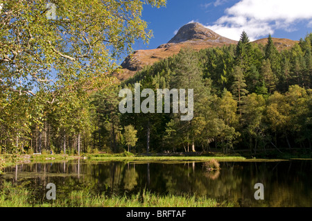 The Glencoe Lochans and the Pap of Glencoe towering above from the forest Trail. Scottish Highlands  SCO 6769 - Stock Photo