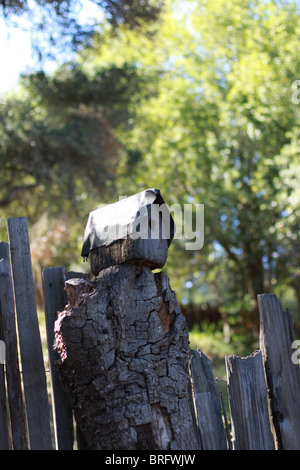 A rustic looking bird house on a post. - Stock Photo