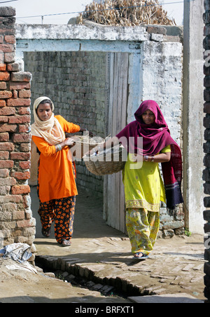 Dalit women from the cast of the untouchables working as scavangers, cleaning human excrements. Uttar Pradesh, India - Stock Photo