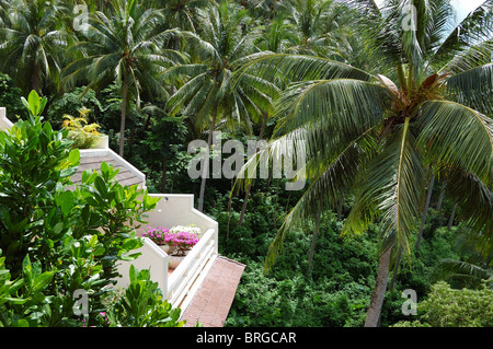 Balcony with flowers of luxury hotel with a view on coconut palm trees, Phuket, Thailand - Stock Photo