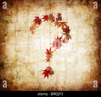 grunge background with question mark made by leaves - Stock Photo
