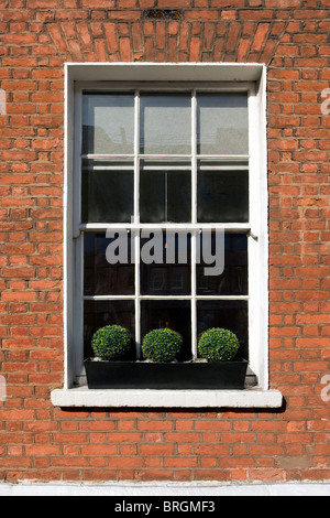 Georgian window in Dublin, Ireland - Stock Photo
