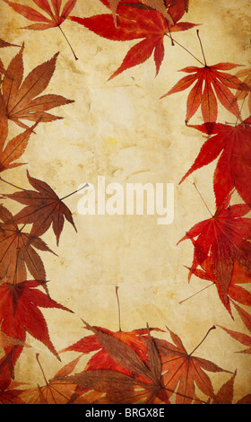 autumn leaf grunge background - Stock Photo