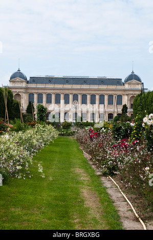Jardin des Plantes, Botanical Garden, Paris, France - Stock Photo