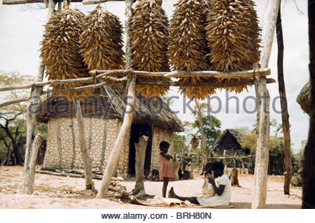 Woman and children sit beneath corn tied to poles and suspended. - Stock Photo