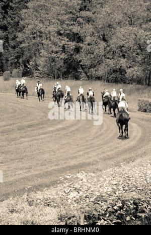 jockeys on horses going to the start of the horse race - Stock Photo