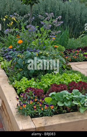 ... A Small Urban Garden With Vegetables Grown In Raised Timber Container    Stock Photo