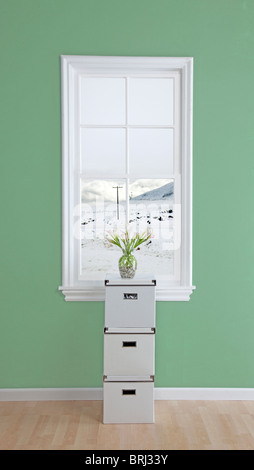 boxes with flowers on top in a room  and snow out the window - Stock Photo