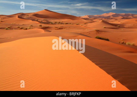 Morning light makes the sands glow in the Erg Chebbi dunes near Merzouga in Morocco - Stock Photo