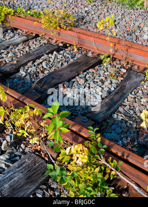 The end of the line / disused railway track - France. - Stock Photo