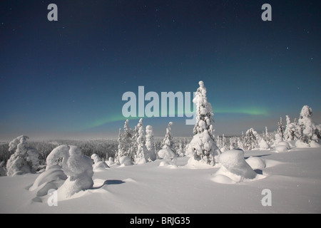 Aurora Borealis over snowy landscape in Riisitunturi National Park at night, Finland - Stock Photo