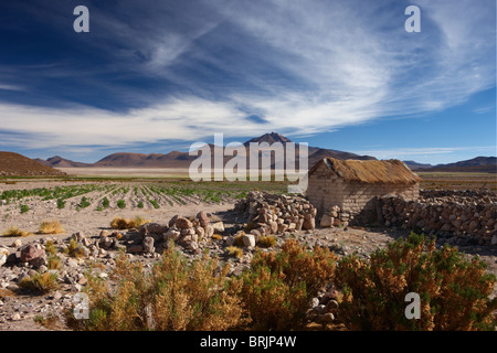 Vulcan Tupan & a campesino's house on the altiplano, Bolivia - Stock Photo