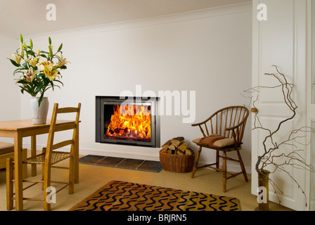An Aquatherm Eco F26 insert wood burning stove with roaring flames in a nice interior - Stock Photo