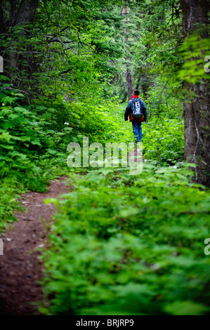 A young man walks along a trail in Glacier National Park, MT. - Stock Photo