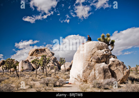 A young man sits on a lone bolder after climbing a route in Joshua Tree National Park. - Stock Photo