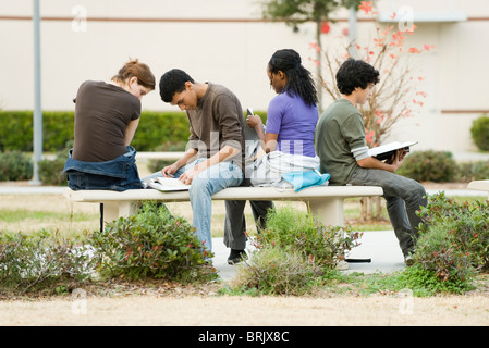High school students studying together outdoors - Stock Photo