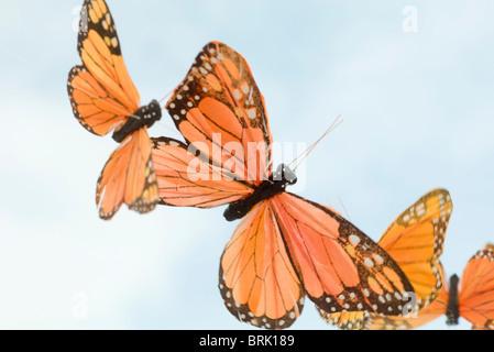 Artificial butterflies - Stock Photo