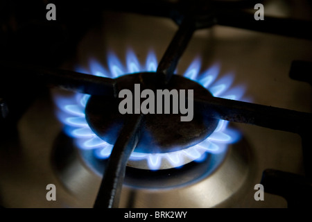 Gas ring on hob - Stock Photo