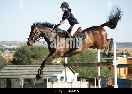 Horse with rider jumping over obstacle during practise routine - Stock Photo