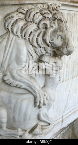 Detail of lion carved on sarcophagus, Camposanto Monumentale, Pisa, Italy - Stock Photo