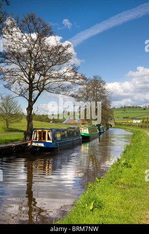 Narrowboats moored on the Monmouthshire and Brecon Canal near Pencelli, Brecon Beacons National Park, Powys, Wales. - Stock Photo