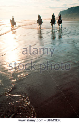 Horse riding on a beach at sunset. - Stock Photo
