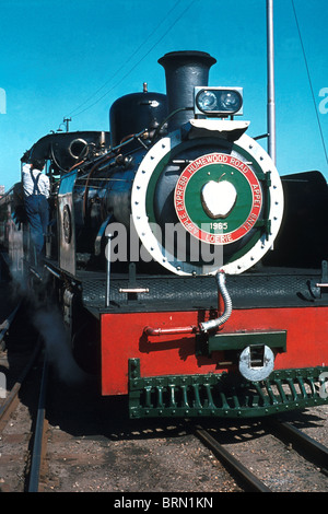 The locomotive from the Apple Express, Eastern Cape - Stock Photo