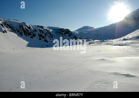 A line of fox tracks crosses the snow-covered summit of Seathwaite Fell in the Lake District. - Stock Photo
