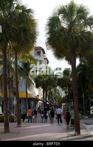 View of Store in Lincoln Road Mall, a very popular tourist destination in Miami. - Stock Photo