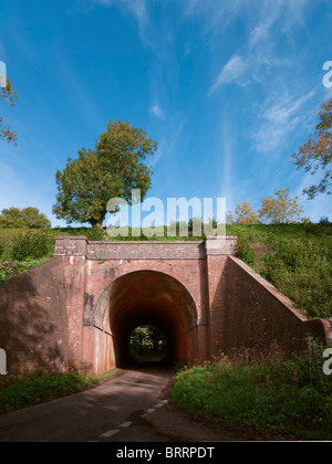 Red Brick Tunnel on a rail embankment with road under with single tree and blue sky - Stock Photo