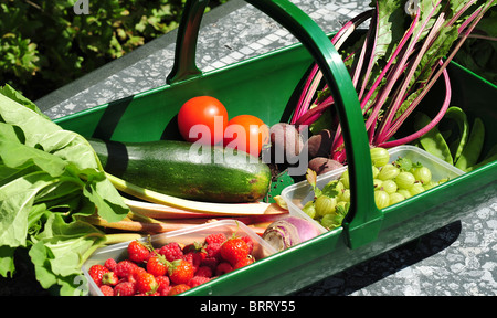 Gardeners trug filled with fresh fruit and vegetables. - Stock Photo