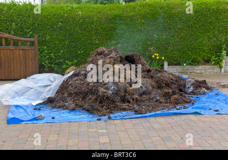 Delivery of horse manure on front drive, Wirral, Merseyside, England - Stock Photo