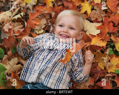 Happy two year old girl lying on fallen tree leaves in autumn nature - Stock Photo