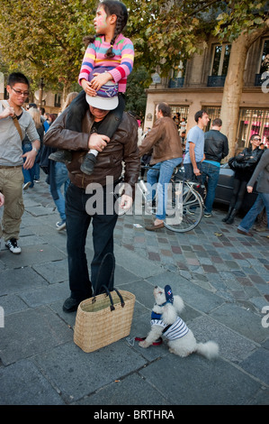 Paris, France, Street Scene, 'French Man' with French Poodle Dog in Funny Dress - Stock Photo
