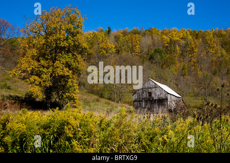 Weathered barn in field, autumn in Schoharie Valley, New York State - Stock Photo