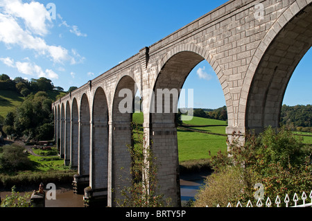 Calstock viaduct, railway crossing the river Tamar connecting Cornwall with Devon - Stock Photo