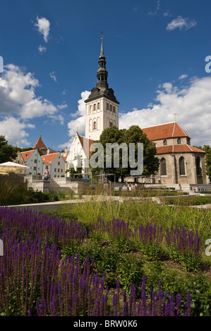 Niguliste Church, Tallinn, Estonia, Baltic States - Stock Photo
