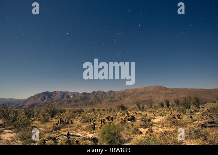 Clear night sky in Anza Borrego Desert State Park, California. - Stock Photo
