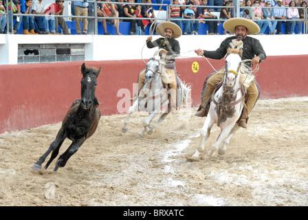 Xmatkuil, Yucatan / Mexico - November 12: Charro tournament during the Xmatkuil Fair - Stock Photo