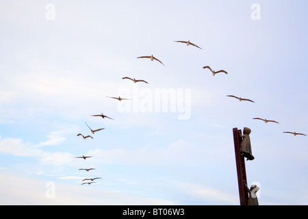 Flock of birds flying over a sculpture in Puerto Vallarta, Mexico - Stock Photo