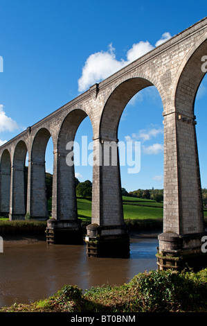 calstock viaduct connecting cornwall with devon over the river tamar - Stock Photo