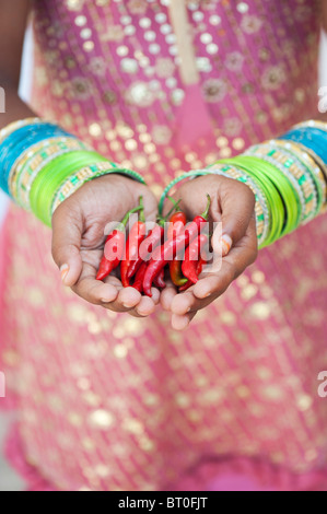 Indian girl holding red chilli peppers in cupped hands - Stock Photo