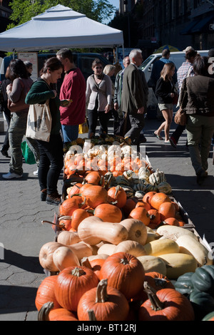 Pumpkins and other gourds in the Union Square Greenmarket in New York on Wednesday, October 13, 2010. (© Richard - Stock Photo