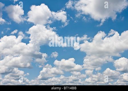 Cumulus clouds - Stock Photo