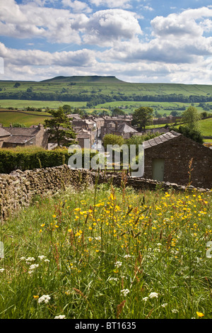 Pasture above Askrigg village, Wensleydale in the Yorkshire Dales. Addlebrough in the distance - Stock Photo